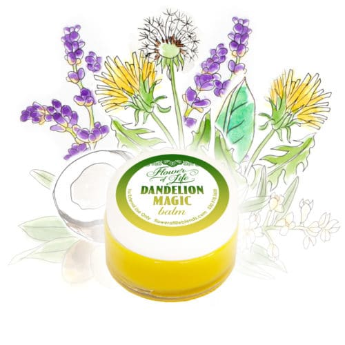 Dandelion Magic Balm